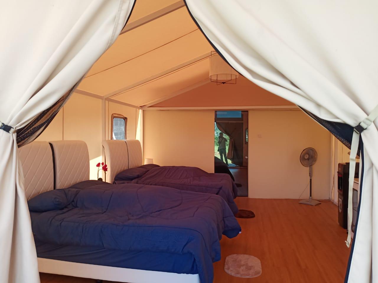 tenda glamping glamour 3
